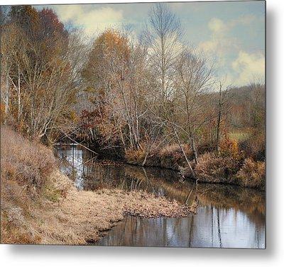 Nature's Glory - Autumn Stream Metal Print by Jai Johnson