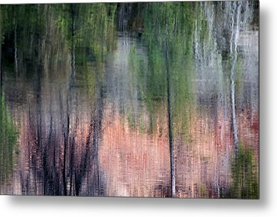 Nature's Mirror Metal Print