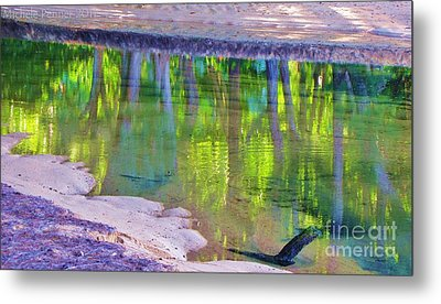 Natures Mirror Metal Print by Michele Penner