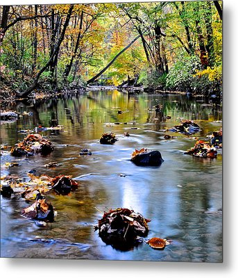 Natures Mood Lighting Metal Print by Frozen in Time Fine Art Photography
