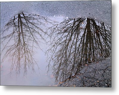 Metal Print featuring the photograph Nature's Reflection  by Candice Trimble