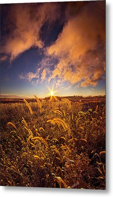 Nature's Romm With A View Metal Print by Phil Koch
