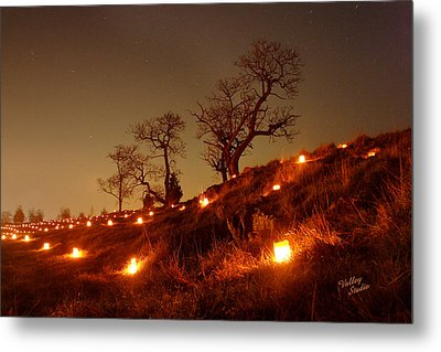 Metal Print featuring the photograph Nature's Sentinels 12 by Judi Quelland