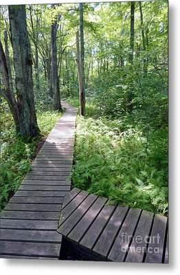 Metal Print featuring the photograph Nature's Walkway by Mary Lou Chmura
