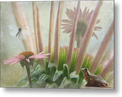 Natures Whimsy Metal Print by Angie Vogel
