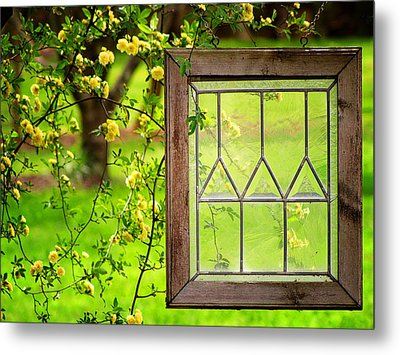 Nature's Window Metal Print
