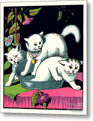 Naughty Cats Play In Tub On Table With Morning Glories Metal Print by Pierpont Bay Archives