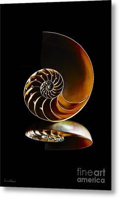 Nautilus Reflection II Metal Print by Eyzen M Kim