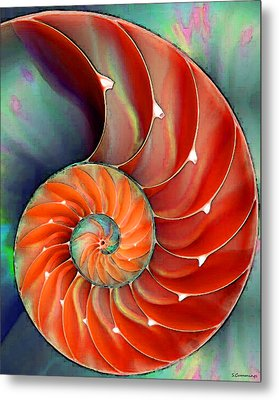 Nautilus Shell - Nature's Perfection Metal Print
