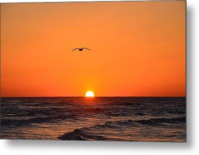 Navarre Beach Sunrise Waves And Bird Metal Print by Jeff at JSJ Photography