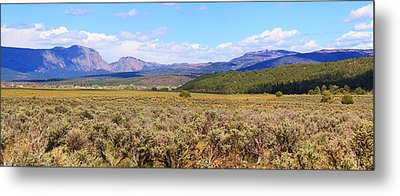 Near Chama New Mexico Metal Print by Roena King