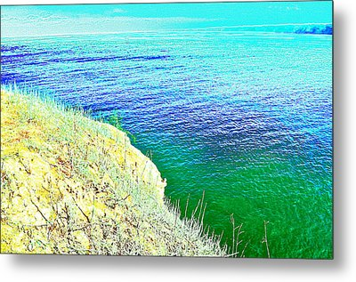 Near The Sea Metal Print