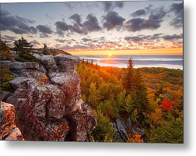 Near Wild Heaven Metal Print by Bernard Chen