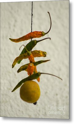 Neembu Mirch  Lemon N Chillies Metal Print by Vineesh Edakkara