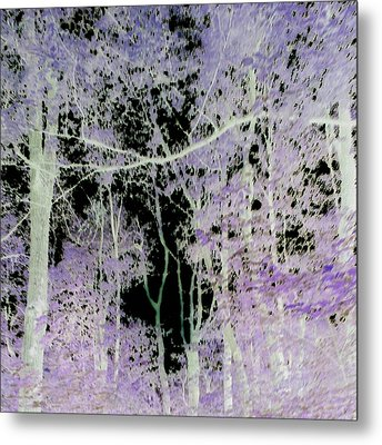 Metal Print featuring the photograph Negascape by Thomasina Durkay