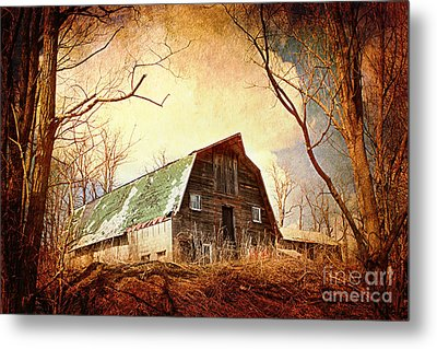Neglected Metal Print by A New Focus Photography
