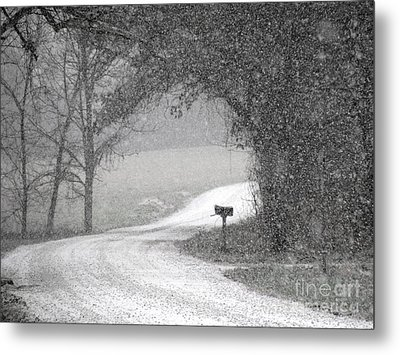 Neither Rain Nor Snow.. Metal Print by Fred  Sheridan