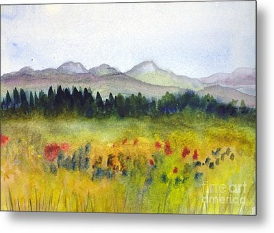 Nek Mountains And Meadows Metal Print by Donna Walsh