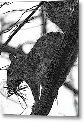 Nest Bedding Metal Print by D Wallace