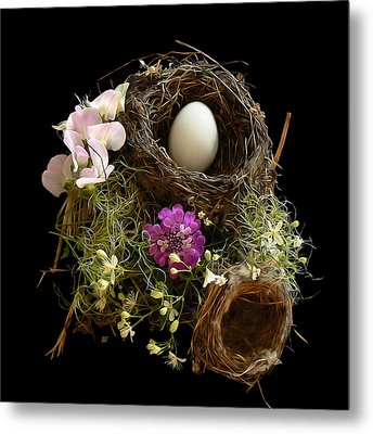 Nest Egg Metal Print by Barbara St Jean