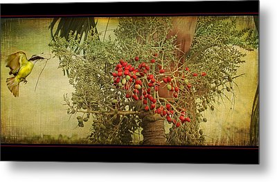 Metal Print featuring the photograph Nesting Tropical Bird by Peggy Collins