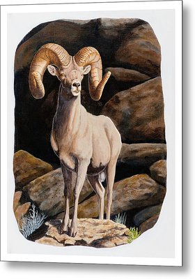 Nevada Desert Bighorn Metal Print