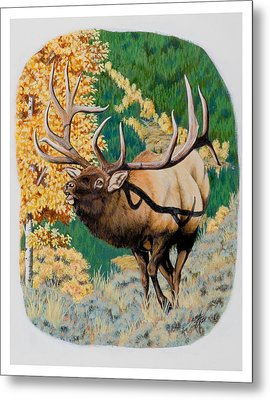 Nevada Nontypical Elk Metal Print