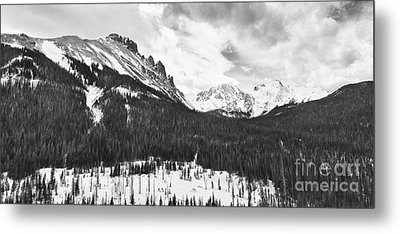 Never Summer Wilderness Area Panorama Bw Metal Print by James BO  Insogna