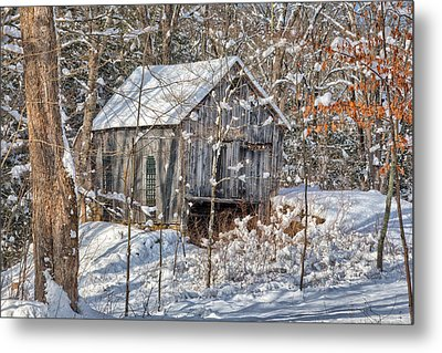 New England Winter Woods Metal Print by Bill Wakeley