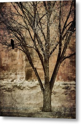 New Mexico Winter Metal Print by Carol Leigh