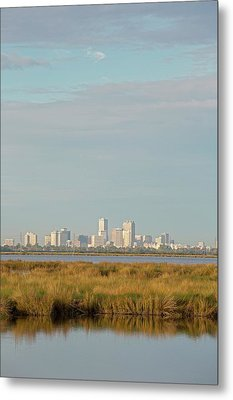 New Orleans And Surrounding Wetlands Metal Print by Jim West