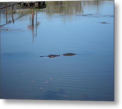 New Orleans - Swamp Boat Ride - 121287 Metal Print by DC Photographer