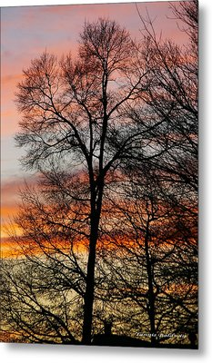 Metal Print featuring the photograph New Years Sunset by Tannis  Baldwin