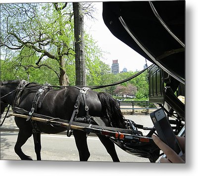 New York City - Central Park - 12122 Metal Print by DC Photographer