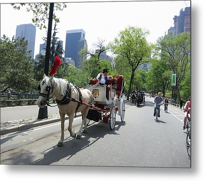 New York City - Central Park - 12124 Metal Print by DC Photographer