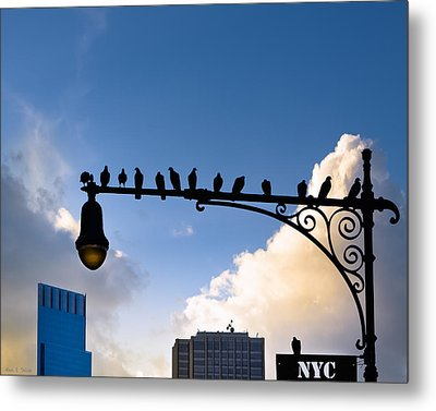 New York City Is For The Birds Metal Print by Mark E Tisdale