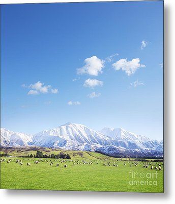 New Zealand Farmland Square Metal Print by Colin and Linda McKie