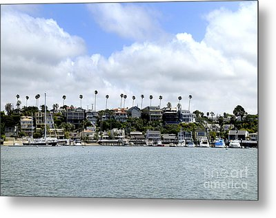 Newport Beach  Metal Print by Timothy OLeary