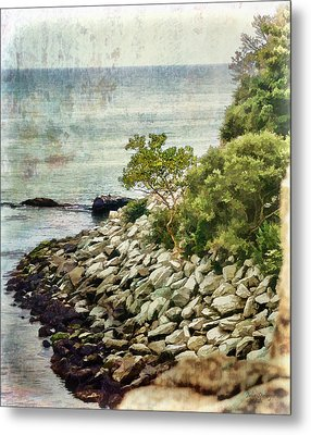 Newport Cliff Walk Metal Print