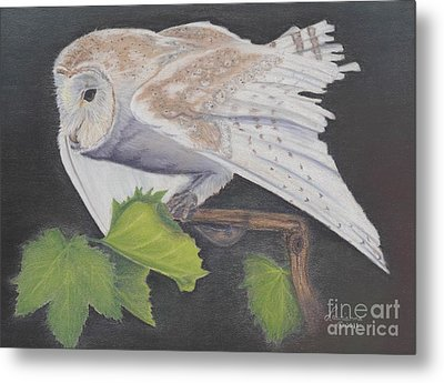Nght Owl Metal Print by Laurianna Taylor