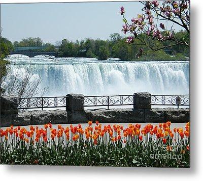 Niagara - Springtime Tulips Metal Print by Phil Banks