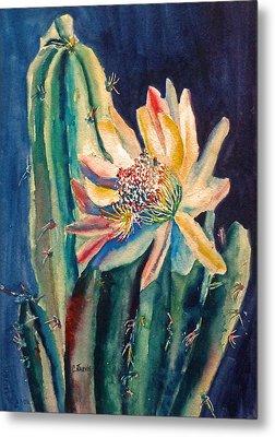 Night Blooming Cactus Metal Print by Carolyn Jarvis