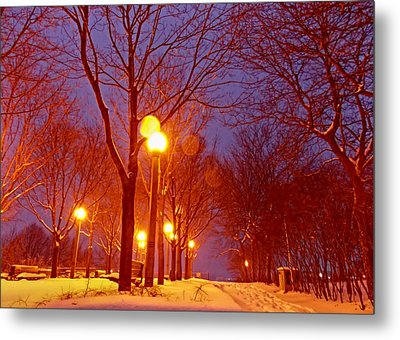 Night Falls Metal Print by Nicky Jameson
