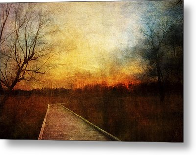 Night Falls Metal Print by Scott Norris