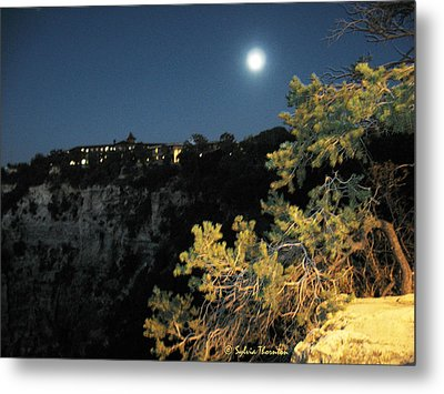 Metal Print featuring the photograph Night Glow by Sylvia Thornton