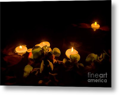 Night In The Garden Pond Metal Print