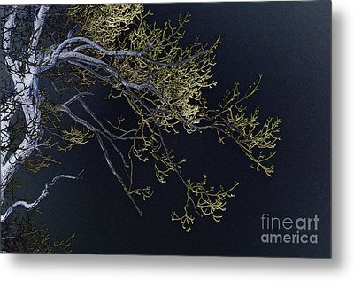 Night Metal Print by Lois Bryan