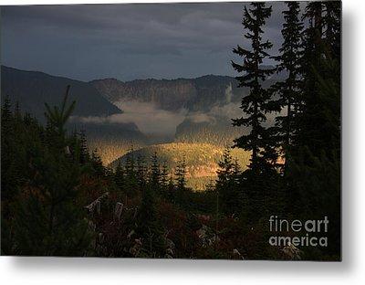 Night On Cougar Mountain Series Vi Metal Print