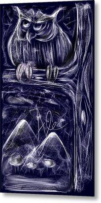 Night Owl Metal Print