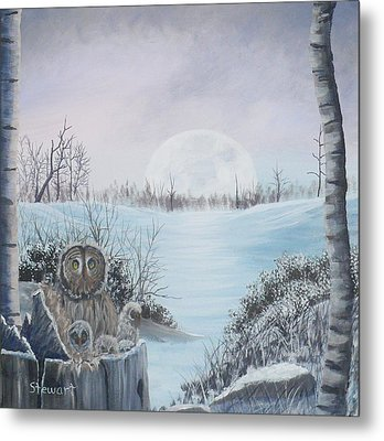 Night Owls Metal Print